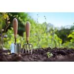 Кофейная гуща для садоводов